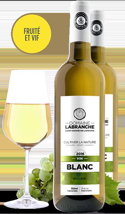 Présentation Vin blanc Domaine Labranche