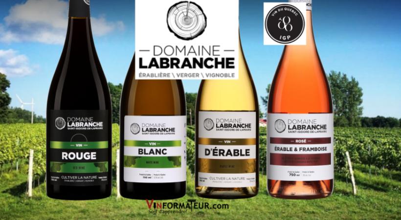 Vinformateur bouteilles DLB - Domaine Labranche